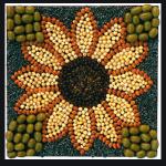 seed creative